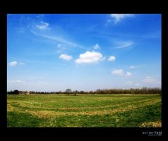 out on fields by kube