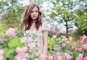 Wild roses by onechristina