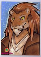 Jedi lion by missmonster