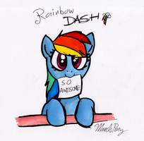 Dashie is SO AWESOME by MandoPony