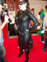 more catwoman by lenlenlen1