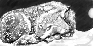 Sleeping Wolf by FlameFoxe