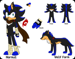 Ender The Hedgehog Refs (Better ver) by xSonadowLover103x