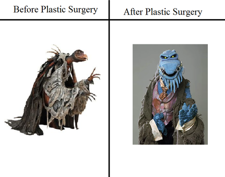 Plastic Surgery by DCatpuppet