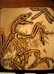 Archaeopteryx lithographica by Corvidnn