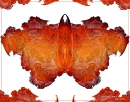 Fire Butterfly by levydesign