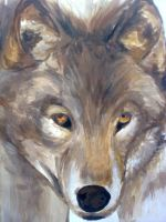 Grey Wolf by Catherine1992