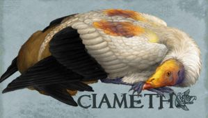 Ciameth ID Badge 2010 by Ciameth