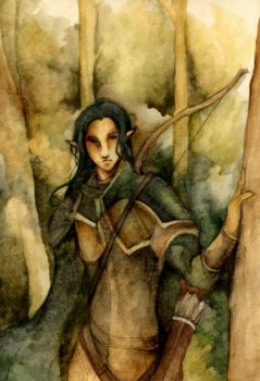 Icewind Dale : Korin by Lingering-Song