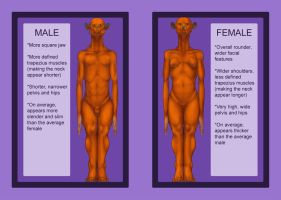 Xzeejees - basic sexual dimorphism by shadechristiwolven