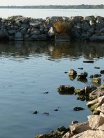Lake Winnebago Shore 2 by FantasyStock