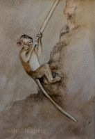 Temple Monkey No. 2. - Watercolour by AstridBruning