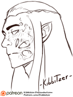 Thranduil's scar by Kibbitzer