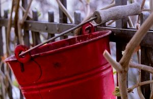 Red Bucket by TheDonQuixotic