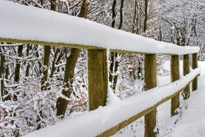 Snowy fence by duncan-blues