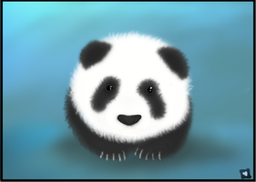 Panda bear by cajoly200