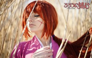 Rurouni Kenshin 6 by cat-shinta