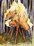 3 headed wolf by bluefooted