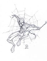 Spiderman sketch by JoeyVazquez