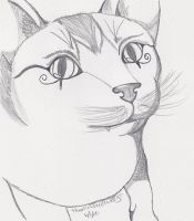Egyptian Kitty Face by theonlywhitewolf