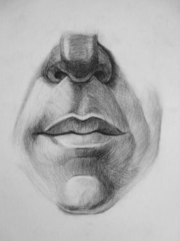 Nose and lips study detail by death-angel-6