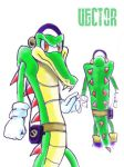 Vector New Design by Sonic-the-Artist