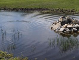 Pond 02 by Eltear-Stock