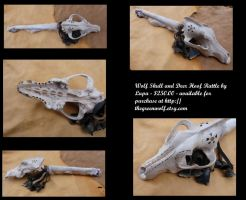 Predator and Prey skull rattle by lupagreenwolf