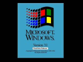 Windows History: Win 3.1 DOS by cooling999