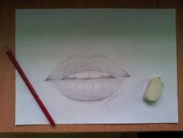 Attempting the realistic... by liego95