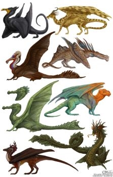 Dragon Designs by Ciameth