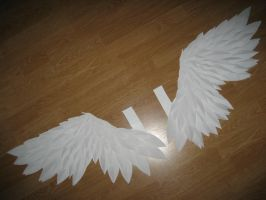 Random-Paper Wings finished by AkabaraYashiki