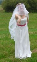 bride on a field - veil 4 by indeed-stock