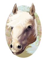 A horse by clotus