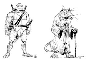 TMNT designs by dfridolfs