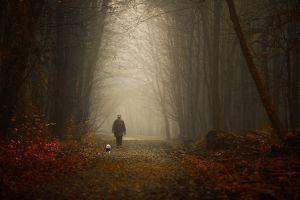 ...maksimir I... by roblfc1892