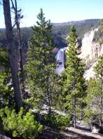 Lower Falls of Yellowstone by SunfallE
