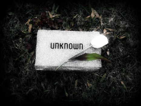 grave of the unknown by pyro-vamp-freak