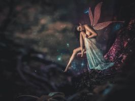 Fairy in the wood by ainu1