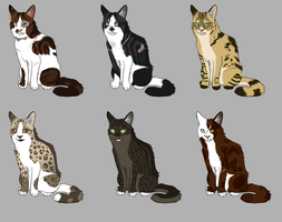 Cat Adoptables [CLOSED] by tiny-owlet