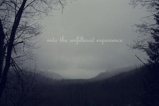 into the unfiltered experience by vovkas