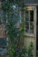 Old greenhouse stock by rustymermaid-stock
