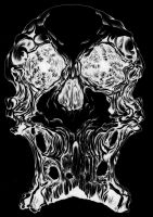Inverted Ink Skull by cav