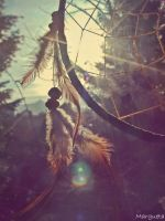 Dream catcher can catch just some dust by margueta