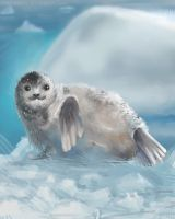 DAILY PAINT : Mister Seal#75 by Dan-zodiac