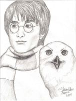 Harry and Hedwig by martiowlsten