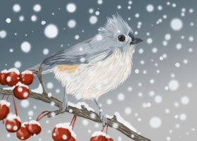 Winter Bird 1 by runcoyoterun