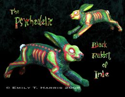 Psychedelic Black Rabbit Model by Shadyufo