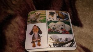 Dog rubber coaster by Akitas237collections