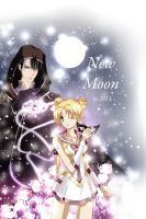 Sailor Moon 2013 by SnowLady7